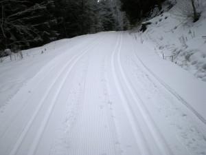 Stopy v zimě upraveny i v okolí Lesního baru