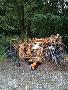 Nejen na kole k nám můžete dojet ;)