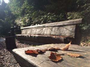 """Lavička """"Panorama"""" na podzim"""