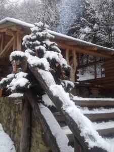 Vánoční stromeček a sníh