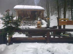 Stromeček 2010