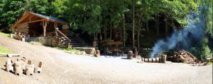 Lesní bar v létě
